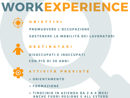 Work Experience Disegnatore CAD